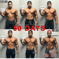Books, Click, and Lean: 212 LBS  DAY  DAY  @LEGIONSPR 0UCTION  50 DAYS  196 LBS  DAYS  KADEN NGUYEN  DAY JS  DAY4 🔥🏆50 DAY SHREDDING TRANSFORMATION! RESPECT! _ •Athlete @vipergq _ 🌍💻 Herculesworkouts© Online Personal Coaching! 🏋🍽 - The 12 Week Fitness & Meal Programs are the ultimate guide to achieving your goal physique, no shortcuts, no bullsh!t, just real natural results! _____ What's Included: 🔹Personalized programs based on your filled out questionnaire. 🔹Fitness: An overvieuw of how manipulating rep ranges throughout the week, the best ways to build muscle mass and strength, suitable for man and women, based on your training frequency and much more! 🔹Nutrition: how many calories and macronutrients you need per day, how to enjoy foods you love and still get in shape, based on your budget and possibility to mealprep and much more! 🔹The science behind gaining lean muscle mass and losing body-fat written down in our E-books which are added to your program! 🔹Unlimited personal contact during your process, unique extra tips and information, evaluation and tips! 🔹Available for men and women! - Wake up the Hercules in you! Go visit at herculesworkouts.com or click the link in the bio of our page: 👉 @herculesworkouts 👈 👉 @herculesworkouts 👈 👉 @herculesworkouts 👈 👉🏻 @shredded_hercules 👈🏻 👉🏻 @shredded_hercules 👈🏻 👉🏻 @shredded_hercules 👈🏻 ____