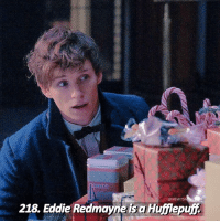 [Fact 218] Same!! [ newtsnifflerfacts harrypotter hermionegranger ronweasley fact hogwarts professormcgonagall deathlyhallows]: 218 Eddie Redmayne is a Huilepufz [Fact 218] Same!! [ newtsnifflerfacts harrypotter hermionegranger ronweasley fact hogwarts professormcgonagall deathlyhallows]