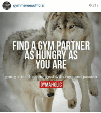 Who's hungry!?: 21s  gymmemesofficial  FIND A GYM PARTNER  AS HUNGRY AS  YOU ARE  going after the sam  goalwith rage and passion  GYMAHOLIC Who's hungry!?