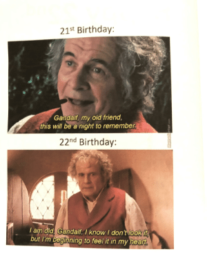 My sister made me a card for my birthday today, and she included a MEME! Love it.: 21st Birthday:  Gandalf, my old friend  this will be a night to remmber  22nd Birthday:  Iam old. Gandalf. I know I don't look it  feel it in my heart  but I'm beginning to My sister made me a card for my birthday today, and she included a MEME! Love it.