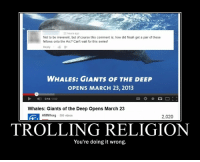 Bad, Trolling, and Videos: 22 hours ago  Not to be irreverent, but of course this comment is, how did Noah get a pair of these  fellows onto the Arc? Can't wait for this series!  Reply  WHALES: GIANTS oF THE DEEP  OPENS MARCH 23, 2013  0:14/3:02  Whales: Giants of the Deep Opens March 23  AMNHorg 588 videos  2,020  TROLLING RELIGION  You're doing it wrong. Are you trying to make atheists look bad?