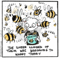 ohhhh man terry: 22  INSTA  THE SHEER NUMBER OF  THEM WAS BEGINNING TO  WORRY TERRY ohhhh man terry