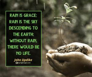 22 Rain Quotes To Shower You With Inspiration #rainquotes #quotes #sayingimages: 22 Rain Quotes To Shower You With Inspiration #rainquotes #quotes #sayingimages