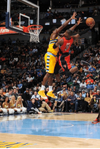 Happy Birthday to former NBA Dunk Champion Terrence Ross!  Yes, he made this dunk: https://t.co/BtJynZKqRN https://t.co/nx0D0pK45C: 226  AIN  Farnm Happy Birthday to former NBA Dunk Champion Terrence Ross!  Yes, he made this dunk: https://t.co/BtJynZKqRN https://t.co/nx0D0pK45C