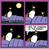 Sleepovers with Snoopy and Woodstock.: 23  I HATE THE CHANGING  OF THE GUARD! Sleepovers with Snoopy and Woodstock.