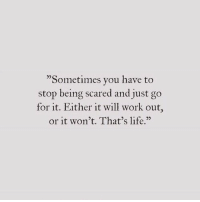 Life, Work, and Will: 23  Sometimes you have to  stop being scared and just go  for it. Either it will work out,  or it won't. That's life.""