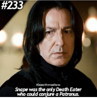 Best Friend, Family, and God: 233  Snape was the only Death Eater  who could conjure a Patronus. A product of an unstable and possibly abusive family, and frequent target of bullying at Hogwarts, Snape took a liking to the Dark Arts at an early age. This immediately put him at odds with his best friend and object of affection, Lily Evans, who was very much against the use of dark magic. Nevertheless, Snape's desire for revenge and need to impress Lily became stronger when James Potter began vying for her attention as well. At the start of the First Wizarding War, he joined the Death Eaters along with other Slytherins from his year. Dementors and other dark magical creatures were aligned with Lord Voldemort during both Wizarding Wars. They were all drawn to the darkness and negativity surrounding him. What need, then, did a Death Eater have of producing a Patronus– a powerful light charm that was the complete antithesis of what they stood for? Unlike his Death Eater comrades, however, Snape's immense capacity for love was stronger than his pull toward the darkness. His memories and feelings around growing up with Lily brought Snape his only true happiness and as such he was able to produce a full Patronus. QOTD: The object placed at right of you would be the thing to kill Voldemort! What is it? I have a bed oh god! @harrypotteredits