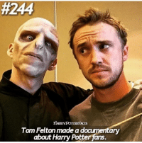 Harry Potter, Memes, and The Documentary:  #244  Tom Felton made a doamentary  about Harry Potter fans. + 🍂|| does anyone know the name of the documentary that he made??