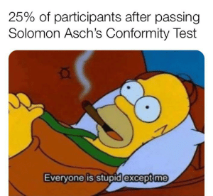 Where my psychology memers at?: 25% of participants after passing  Solomon Asch's Conformity Test  Everyone is stupidexcept me Where my psychology memers at?
