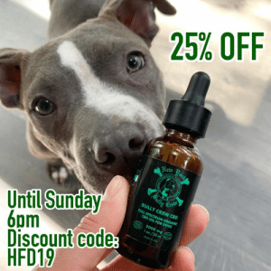 Dogs, Life, and Memes: 25% OFF  Nen urk  raton  (Dully  Crew  BULLY CREW CBD  Until Sunday  6pm  Discount code  HFD19  FULL SPECTRUM ORGANIC  CBD OIL FOR DOGS  CECO  2000 mgfo0  oz/30ml  Made n uSA NYBC CBD FATHER'S DAY PROMO🌿 until Sunday June 16-6pm🚨 25% Off with  discount code: HFD19 NYBC now has 2000mg CBD oil available for your dog and you! Purchase at www.bullycrewink.com 🌿Enjoy the calming benefits, relief from soreness and pain, boost the immune system and overall better health! NYBC wants every dog and its owner to have the very best quality of life and that is what we aim to bring you - an effective and natural product that will have both you and your pet feeling healthier in body and mind! Shipping locations will be determined as per regulations. 🌿To purchase please go to our IG HIGHLIGHTS **We are working hard to help you and your pet.  Many of our facility dogs and foster dogs have had amazing results because of CBD‼️ ** Results may vary and always consult a medical professional - traditional and/or holistic vet- before adding or changing a health plan** #nybccbd