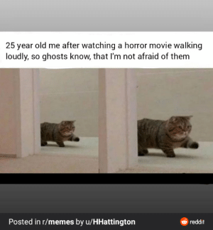 This is kinda wholesome, in a weird way :D: 25 year old me after watching a horror movie walking  loudly, so ghosts know, that I'm not afraid of them  Posted in r/memes by u/HHattington  6 reddit This is kinda wholesome, in a weird way :D