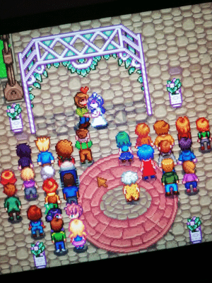 25th of spring, Year 2. I didn't really dress up for the occasion, but I got married to Abigail!: 25th of spring, Year 2. I didn't really dress up for the occasion, but I got married to Abigail!
