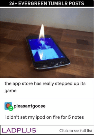 Click, Fire, and Tumblr: 26+EVERGREEN TUMBLR POSTS  the app store has really stepped up its  game  pleasantgoose  i didn't set my ipod on fire for 5 notes  LADPLUS  Click to see full list