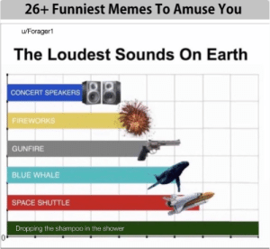 Funny, Lol, and Memes: 26+ Funniest Memes To Amuse You  u/Forager1  The Loudest Sounds On Earth  CONCERT SPEAKERS  FIREWORKS  GUNFIRE  BLUE WHALE  SPACE SHUTTLE  Dropping the shampoo in the shower Best 26+ Funniest Memes To Amuse You #FUNNY #Memes #sarcasm #haha #lol #hilarious