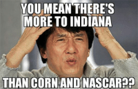 fan meme : YOU MEAN THERE'S  MORE TO INDIANA  THAN CORN AND NASCAR fan meme