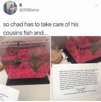 😹😹😹lol: @26Blaine  so chad has to take care of his  cousins fish and.  Hello Chad. This is Ron. He is my fish. Thank you for taking care  of him while I'm away on vacation. As you can see, I have  previously set out piles of food. He only needs one pile a day. Try  to come any day you can because if you kill him, you WILL be  sorry. He is a very lazy fish so if you see him lying at the bottom  of the tank he is most ikely sleeping. You can get him going by  putting your finger next to the tank or giving him food DO NOT  pet him or tap on the tank. His birthday is July 28 and it would be  greatly appreciated if you would send us a video of you singing  happy birthday to him.  Thank you again,  Kylie Bass  taking care  ave  a day  (P S. if you get angry at him, teel free to call him Ronald) 😹😹😹lol