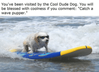 """You Have Been Visited By: You've been visited by the Cool Dude Dog. You will  be blessed with coolness if you comment: """"Catch a  wave pupper.''"""