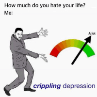 Crippling: How much do you hate your life?  Me  A lot  crippling depression