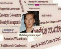 Benadryl, Cum, and Dank Memes: t Benadryl Cumbersome  Hbert Cumberdale  Peppermint Cummysnat  Benefactor Cobblestone  Cumbentbert Snapersnatch  What's this name again?  cum-aban  adick Bend Barnabus Wizardcock Is this loss? Buy our shirt and find out!: https://teespring.com/lossmeme
