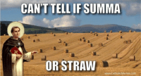 http://www.catholicmemes.com/aquinas-is-not-i…/frye-aquinas/: CANT TELL IF SUMMA  OR STRAW  www.CatholicMemes.com http://www.catholicmemes.com/aquinas-is-not-i…/frye-aquinas/