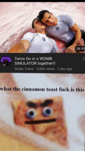 youtube.com, Twins, and Fuck: 28:55  Twins Go in a WOMB  SIMULATOR together!!  Dolan Twins 3.6M views 1 day ago  what the cinnamon toast fuck is this Youtube Trending