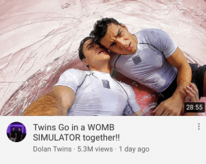 Twins, Dolan, and Day: 28:55  Twins Go in a WOMB  SIMULATOR together!!  Dolan Twins 5.3M views 1 day ago Pardon me?
