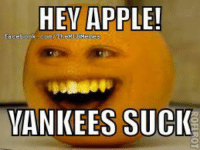 What else would you expect from Annoying Orange? (Tyler Isbitts): HEY APPLE!  YANKEES SUCK What else would you expect from Annoying Orange? (Tyler Isbitts)