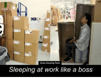 I admire the creativity.: 2a  2012  Some Amazing Facts  Sleeping at work like a boss I admire the creativity.
