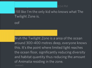 Or it's just the Disney ride lol: 3:54 PM  I fill like I'm the only kid who knows what The  Twilight Zone is.  oof  Bruh the Twilight Zone is a area of the ocean  around 300-400 metres deep, everyone knows  this. It's the point where limited light reaches  the ocean floor, significantly reducing diversity  and habitat quantity thus reducing the amount  of Animalia residing in the zone.  (edited) Or it's just the Disney ride lol