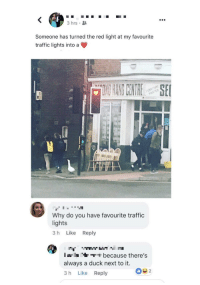 Traffic, Duck, and Wholesome: 3 hrs .  Someone has turned the red light at my favourite  traffic lights into a  Why do you have favourite traffic  lights  3 h Like Reply  T because there's  always a duck next to it.  3 h Like Reply Wholesome traffic lights