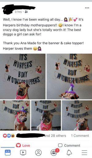 A friend did a b-day party for her dog and it made my heart happy: 3 hrs  Well, I know I've been waiting all day...  It's  l know I'm a  Harpers birthday motherpuppers!!  crazy dog lady but she's totally worth it! The best  doggo a girl  can ask for!  Thank you Ana Made for the banner & cake topper!  Harper loves them  M'S  IT'S  HNARES  BDY  OMER S  HARPERS  B DAY  MUTHCARPPRS  T'S  HNEERS  EDY  MOWERUIS  BOAY  EDIY  (PERS  GIRL!  RI:  and 28 others  1 Comment  Love  Comment A friend did a b-day party for her dog and it made my heart happy