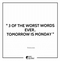 """#2015 #Funny Suggested by our editor MC SID From New Delhi , India Tag all your friends who you know totally agree with this..!!!: """" 3 OF THE WORST WORDS  EVER.  TOMORROW IS MONDAY""""  Unknown  epic  quotes #2015 #Funny Suggested by our editor MC SID From New Delhi , India Tag all your friends who you know totally agree with this..!!!"""