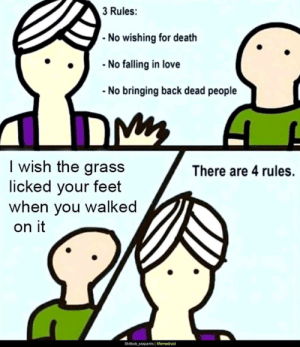 Its not hard to understand, right?: 3 Rules:  - No wishing for death  - No falling in love  No bringing back dead people  I wish the grass  licked your feet  when you walked  There are 4 rules.  on it  Shitbob_asspants | Memedroid Its not hard to understand, right?