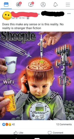 Sheeple: 3  Sat at 10:14  Does this make any sense or is this reality. No  reality is stranger than fiction  Sheeple  ALUMINUM  FLUORIDE  WIFI  PGGE  SmartMeter  210  CL 200  aTAE  TA  12 Comments  42  Comment  Like  MERCURY  RITALIN Sheeple