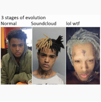 Memes, Wtf, and Evolution: 3 stages of evolution  Normal  Soundcloudlol wtf  G:PolarSaurusRex 3 stages of evolution. Also check my previous post it's important🤧 Follow me for more memes! @PolarSaurusRex