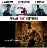 "Do you agree? ~GL: 3 SUPERMAN  3 SPIDERMAN  5 BATMAN  ALWAYS  ""ONE"" WOLVERINE  THE  YVOLVERINE  VIA CAG COM Do you agree? ~GL"