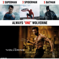 "Always one Wolverine! 👌: 3 SUPERMAN  3 SPIDERMAN  5 BATMAN  ALWAYS  ""ONE""  WOLVERINE  THE  WOLVERINE  VIA CAG COM Always one Wolverine! 👌"