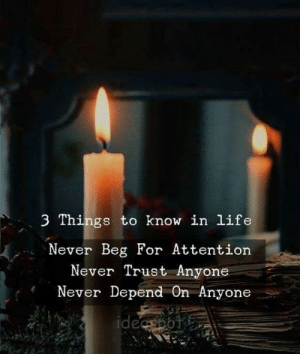 Life, Never, and For: 3 Things to know in life  Never Beg For Attention  Never Trust Anyone  Never Depend On Anyone