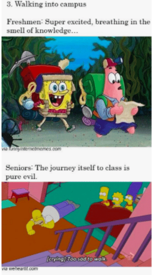 studentlifeproblems:  If you are a student Follow @studentlifeproblems: 3. Walking into campus  Freshmen: Super excited, breathing in the  smell of knowledge.  via lunnyintenetmemes.com  Seniors: The journey itself to class is  pure evil.  cryingToo sad to walk  com studentlifeproblems:  If you are a student Follow @studentlifeproblems