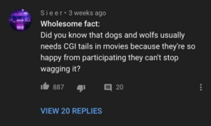 This wholesome fact: 3 weeks ago  Sieer  Wholesome fact:  Did you know that dogs and wolfs usually  needs CGI tails in movies because they're so  happy from participating they can't stop  wagging it?  O 20  887  VIEW 20 REPLIES This wholesome fact