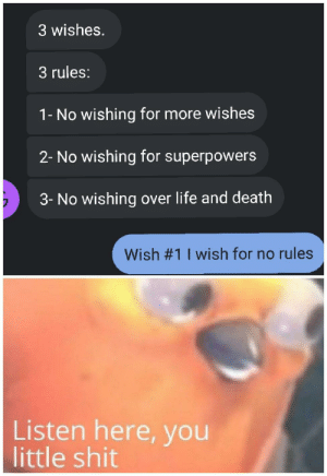 Life, Shit, and Death: 3 wishes.  3 rules:  1- No wishing for more wishes  2- No wishing for superpowers  3- No wishing over life and death  Wish #1 1 wish for no rules  Listen here, you  little shit Mad genie