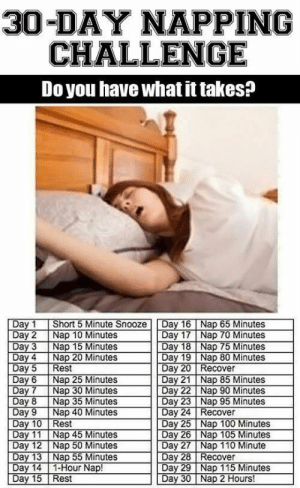 Anaconda, Club, and Tumblr: 30-DAY NAPPING  CHALLENGE  Do you have what it takes?  Day 1 Short 5 Minute Snooze Day 16Nap 65 Minutes  Day 2 Nap 10 Minutes  Day 3 Nap 15 Minutes  Day 17 Nap 70 Minutes  Day 18 Nap 75 Minutes  Day 4 Nap 20 Minutes  Day 19 Nap 80 Minutes  Day 21 Nap 85 Minutes  Day 23 Nap 95 Minutes  Day 25 Nap 100 Minutes  Day 20 Recover  Day6 Nap 25 Minutes  Day 8 Nap 35 Minutes  Day 9 Nap 40 Minutes  Day 24 Recover  est  Day 26 Nap 105 Minutes  Day 11 Nap 45 Minutes  Day 12 Nap 50 Minutes  Day 28 Recover  Day 14 1-Hour Nap!  Day 15 Rest  Day 29 Nap 115 Minutes  Day 30 Nap 2 Hours! laughoutloud-club:A Challenge I Can Accomplish
