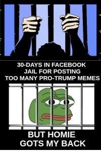 Facebook Jail: 30-DAYS IN FACEBOOK  JAIL FOR POSTING  TOO MANY PRO-TRUMP MEMES  BUT HOMIE  GOTS MY BACK