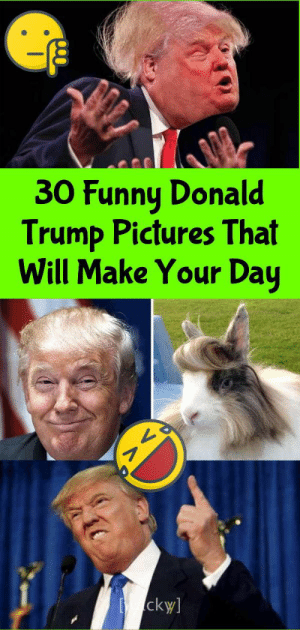 30 Funny Donald Trump Pictures That Will Make Your Day: 30 Funny Donald Trump Pictures That Will Make Your Day