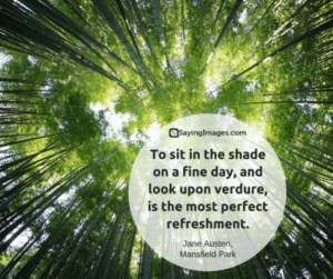 30 Nature Quotes: The Hues of the Earth Is All It Takes #naturequotes #quotes #sayingimages: 30 Nature Quotes: The Hues of the Earth Is All It Takes #naturequotes #quotes #sayingimages