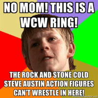 Austin: NO MOM! THIS ISA  WCW RING!  THE ROCK AND STONE COLD  STEVE AUSTIN ACTION FIGURES  CANT WIRESTLE IN HERE!  net