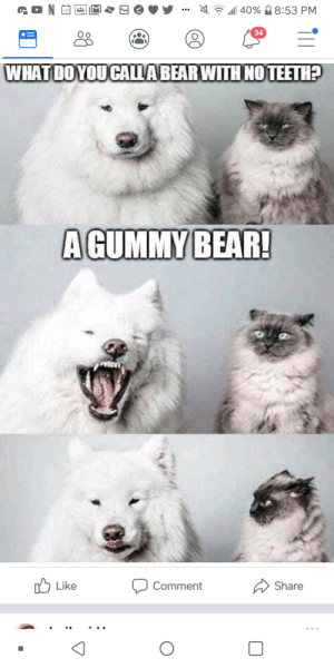 Bear, Gummy Bear, and Comment: 34  O o  WHAT DOYOU CALLA BEAR WITH NOTEETH?  A GUMMY BEAR  Share  Comment  Like  0 K