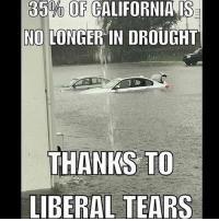Memes, Millennials, and 🤖: 35 OF CALIFORNIA IS  NO LONGER IN DROUGHT  THANKS TO  LIBERAL TEARS Liberals are so triggered everyday Trump is in office it is amazing😂😂🇺🇸 sfla2017 whywemarch PresidentTrump Trump Republican Conservative American Nobama Hillary4Prison Navy Marines Trump Hillary Trump Airforce president Liberals MakeAmericagreatagain feelthebern buildthewall bernie2016 trump2016 Obama like politics Partners --------------------- @too_savage_for_democrats🐍 @raised_right_🐘 @conservative.inc🍻 @young.conservative_👍🏼 @conservativemovement🎯 @millennial_republicans🇺🇸 @ny_conservative1776😎