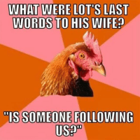anti joke chicken: WHAT  WERE LOTS LAST  WORDS TO HIS WIFE?  TISSOMEONE FOLLOWING  Usap