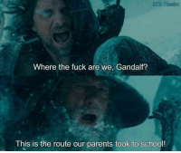 Gandalf, Memes, and Parents: 37th Realm  Where the fuck are we, Gandalf?  This is the route our parents took to school!